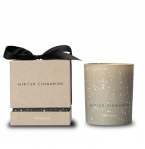 Candle Winter Cinnamon